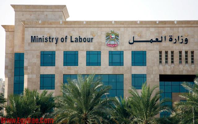 وزارة-العمل-الامارات-640x400
